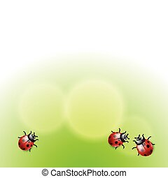 Green background with ladybirds. With place for text. EPS10 ...