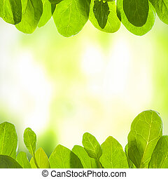 Green background with leafs