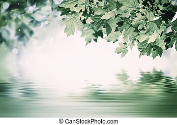 Green Background with Maple