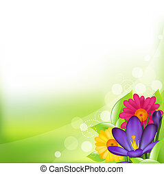 Spring Flower - Green Background With Spring Flower, Vector...