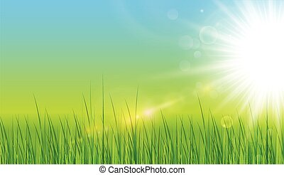 Green background with sun and grass