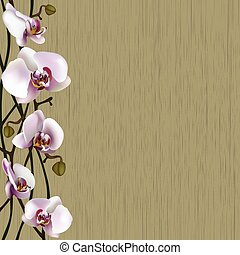 Green background with white orchid flowers, stems and buds