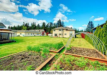 Green backyard with garden bed