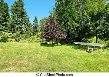 Green backyard with trampoline
