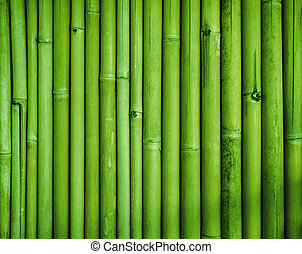 Green bamboo fence texture