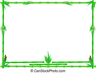 green bamboo frame on white
