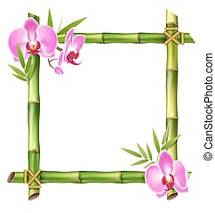 Green Bamboo Frame with Pink Orchid Flowers Isolated on White