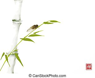 Green bamboo tree and cicada bug hand drawn with ink in minimalist style. Traditional oriental ink painting sumi-e, u-sin, go-hua. Hieroglyph - zen.