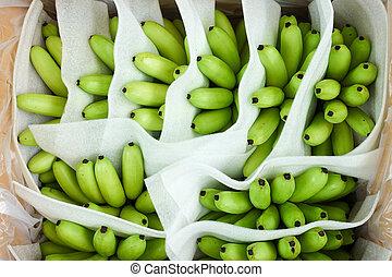 Green bananas in a box