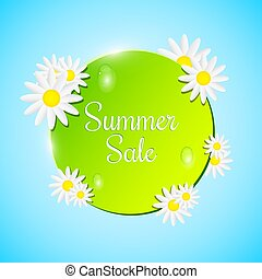 Green banner on a blue background. beautiful flowers. White chamomile. water drops. Realistic vector illustration. Summer Sale. EPS 10