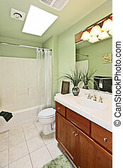 Green bathroom - Large master bathroom. Seattle, WA. Canon...