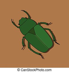 Green Beetle Insect Vector Illustration