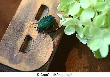 Green beetle on wood type B