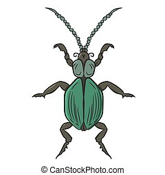 Green beetle. vector illustration. Drawing by hand.