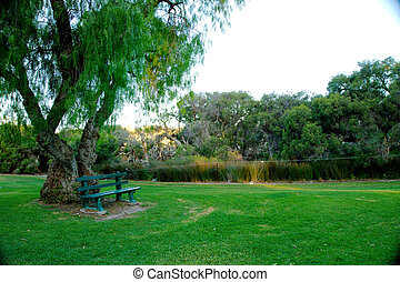 Green bench under a tree in a park