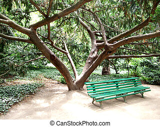 Green bench under a tree in the botanical garden.