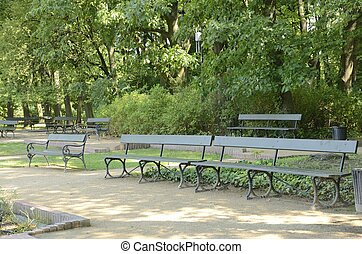 Green benches in park