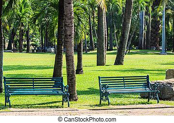 Green Benches in Tropical Garden