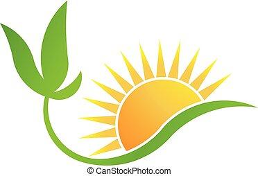 Green bio-solar energy. Plant and Sun logo vector