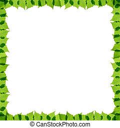 Green birch leaves frame