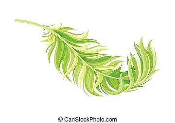 Green Bird Feather with Nib as Avian Plumage Vector ...