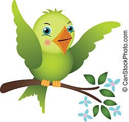 Green bird on tree branch