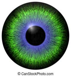 Green - blue eye iris
