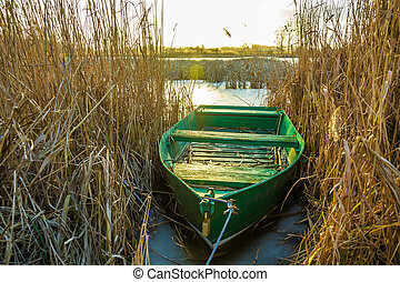 Green boat moored in the dry reeds