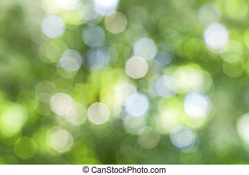 Green bokeh abstract light background, forest bokeh