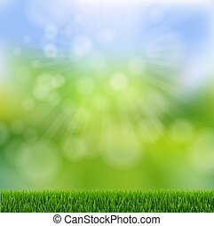 Green Bokeh With Green Grass Border