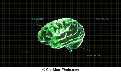 green brain with code