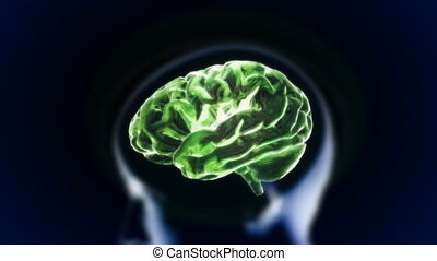 green brain with head section glow