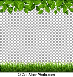 Green Branches And Grass Transparent background