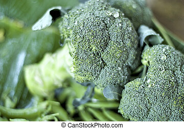 green broccoli in the market