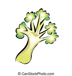 Green broccoli. Vector illustration, isolated on white.