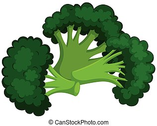 Green brocolli on white background
