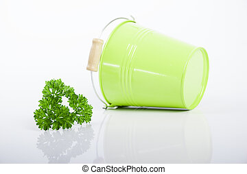 Green bucket with parsley and dill isolated on white