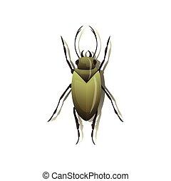 Green bug on white background. Vector illustration.