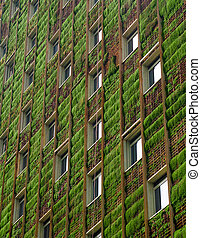 Green building - Vertical shot of a green building filled ...