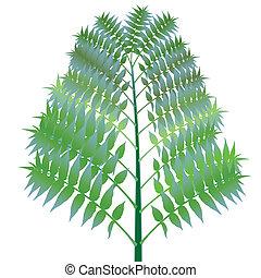 green bush against white