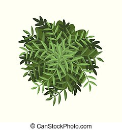 Green bush, landscape design element, top view vector Illustration on a white background