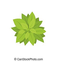 Green bush. View from above. Vector illustration.