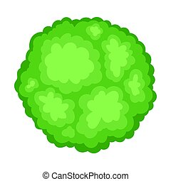 Green bush. View from above. Vector illustration on a white background.