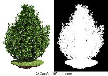Green Bush with Detail Raster Mask. - Green Bush on Grass ...