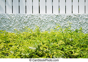 Green bush with white fence