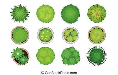 Green Bushes and Shrubs for Landscape Gardening and Design Vector Set