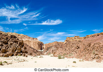 green bushes on the sand in a canyon in the desert against the backdrop of mountains and a blue sky with clouds in Egypt Dahab South Sinai