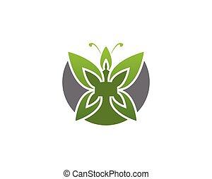 Green butterfly logo design template