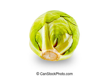 Green Cabbage Against The White Background