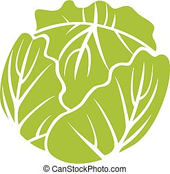 green cabbage vector icon